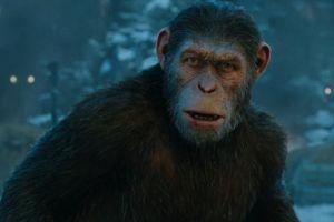 Disney làm tiếp loạt 'Hành tinh khỉ'