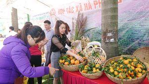 Siêu thị Co.opmart tổ chức Tuần lễ nông sản, thực phẩm tỉnh Hòa Bình năm 2019