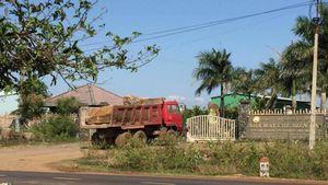 Gia Lai: Phát hiện công ty khai thác đá trái phép nghi có 'bảo kê'