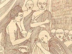 Của Ananda và Peter: Khi thân xác chối từ