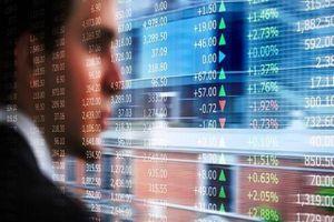 Thêm hai nhà đầu tư bị phạt hơn 150 triệu đồng