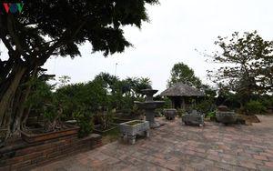 Hồng Vân - điểm du lịch làng nghề sinh vật cảnh hấp dẫn ven sông Hồng