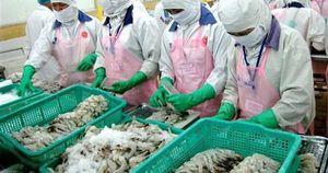 Mỹ điều tra hành vi lẩn tránh thuế sản phẩm tôm xuất khẩu