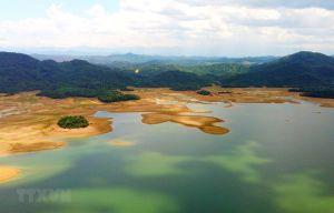 Việt Nam nỗ lực bảo vệ 'cái nôi' đa dạng sinh học vùng đất ngập nước