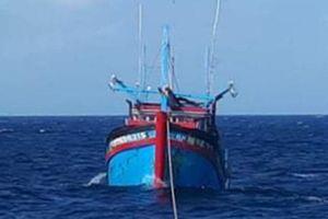 Tàu 743 cứu nạn và lai dắt tàu cá KH 96543TS về đảo Núi Le an toàn