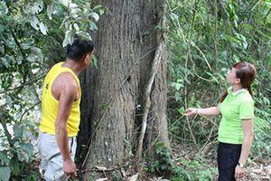 Chuyện rừng Ma bản Lói