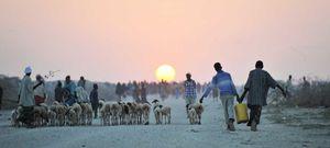 LHQ triển khai kế hoạch hỗ trợ Somalia đối phó với dịch COVID-19