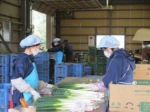 Điều kiện cấp phép hoạt động dịch vụ đưa người lao động đi làm việc ở nước ngoài