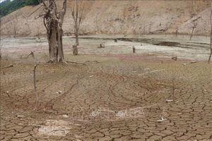 Chủ động nguồn nước để sử dụng hiệu quả trong điều kiện hạn hán