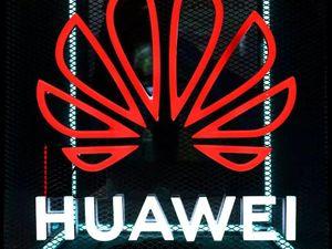 Huawei xây dựng 'văn hóa chó sói' như thế nào?