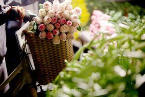 Chợ hoa đêm lớn nhất Thủ Đô vắng khách sau khi dỡ phong tỏa