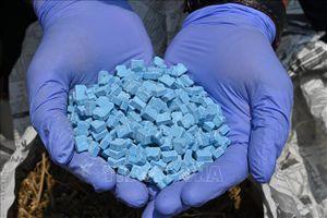 Indonesia bắt giữ vụ vận chuyển 821 kg ma túy đá