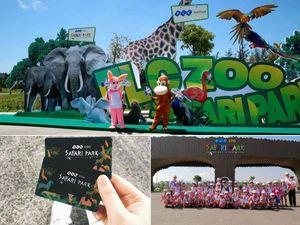 Công viên động vật bán hoang dã ấn tượng bậc nhất Quy Nhơn