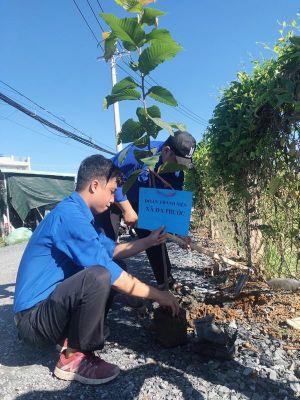 VWS tổ chức trồng 600 cây dầu và sưa ở xã Đa Phước