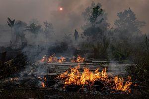 Băng tan, cháy rừng và sự tàn khốc của biến đổi khí hậu