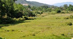 Cạnh hồ thủy lợi, hơn 40ha đất trồng lúa vẫn 'khát'