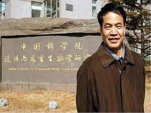 Giáo sư gốc Trung Quốc nhận tội trốn thuế tại Mỹ