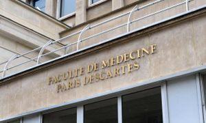 Xác hiến cho đại học Pháp nghiên cứu bị 'để cho chuột ăn'