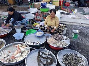 Bảo vệ nguồn lợi thủy sản trước nguy cơ cạn kiệt