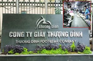 Giày Thượng Đình bị cưỡng chế nợ thuế