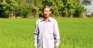 Làm thế nào để tăng năng suất lúa?