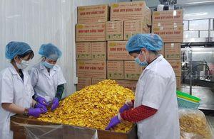 Khuyến công Đồng Tháp thúc đẩy phát triển sản xuất công nghiệp nông thôn
