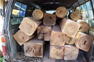 Lâm tặc lao xe chở gỗ lậu vào lực lượng chức năng để bỏ trốn