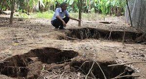 Xuất hiện nhiều hố sụt lún bất thường trong vườn nhà dân
