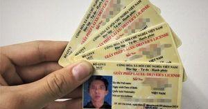 Chính phủ đồng ý cấp điểm bằng lái xe