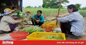 Châu Phú thực hiện tái cơ cấu nông nghiệp