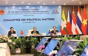 Nâng cao vai trò của nghị viện trong phát triển bền vững, hòa bình
