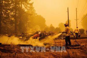 Mỹ: Cháy rừng hoành hành tại bang California và Oregon