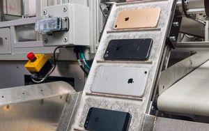 Apple bị 'lấy trộm' hơn 100.000 chiếc iPhone lẽ ra phải đem đi tái chế