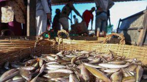 Xuất khẩu thủy sản của Campuchia giảm trên 80% trong 9 tháng