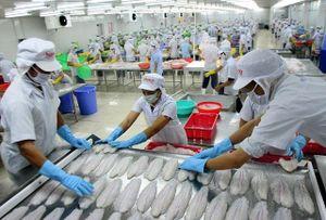 Xuất khẩu với đích ngắm 300 tỷ USD: Động lực từ các FTA
