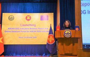 Tổng cục Thống kê Việt Nam công bố công cụ đảm bảo tính minh bạch các chỉ tiêu SDG của ASEAN