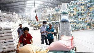 Đề xuất định mức chi phí nhập, xuất hàng hóa dự trữ quốc gia