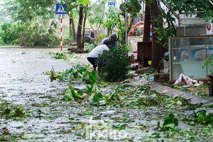 Đà Nẵng sau cơn cuồng phong bão số 9: Mỗi người một tay dọn dẹp cảnh ngổn ngang