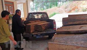 Lâm Đồng: Phát hiện xe chở gỗ lậu