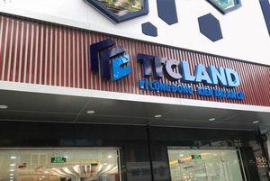 TTC Land chuyển nhượng cổ phần nắm giữ tại các doanh nghiệp