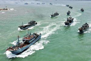 Quan chức Mỹ báo động về các đội tàu cá trái phép từ Trung Quốc