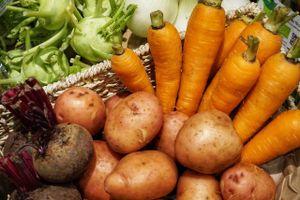 'Đốt' hàng trăm tỷ đồng làm nông nghiệp hữu cơ
