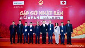 'Gặp gỡ Nhật Bản 2020' - kết nối trực tiếp địa phương, DN Việt Nam-Nhật Bản