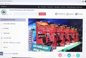 Quảng Ninh: Mục tiêu năm 2025 sẽ có 55% dân số mua sắm trực tuyến