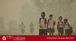 Ô nhiễm không khí làm suy giảm trí thông minh, khả năng ngôn ngữ