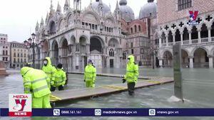 Venice 'thất thủ' vì dự báo sai