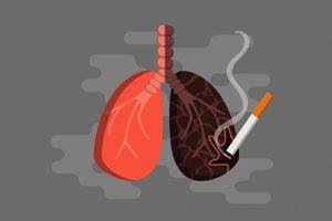 Thuốc lá ảnh hưởng đến chức năng của phổi