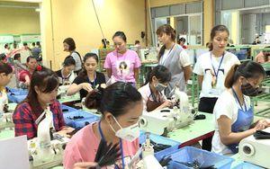 Tuyên Quang: Triển khai hiệu quả dự án Phát triển thị trường lao động