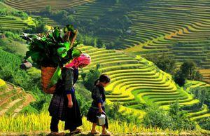 Tỉnh duy nhất của Việt Nam giáp cả Lào và Trung Quốc