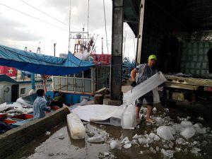 Khánh Hòa: Nỗ lực cấp 'giấy thông hành' để tàu cá ra khơi